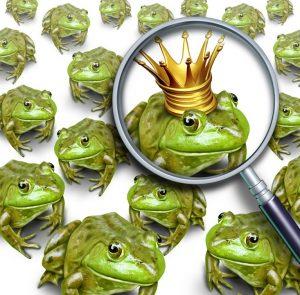 kissing frog prince