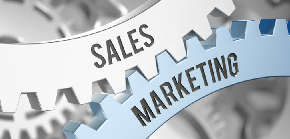 Train Your Sales VP